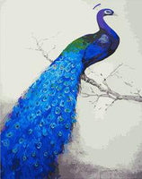 Peacock Diy Paint By Numbers Kits UK AN0131
