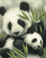 Panda Diy Paint By Numbers Kits UK AN0147