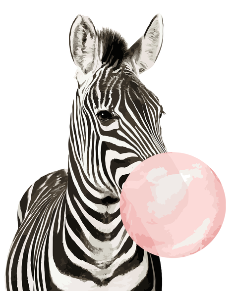 Zebra Diy Paint By Numbers Kits UK AN0154