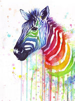 Animal Zebra Diy Paint By Numbers UK AN0156
