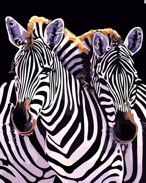 Zebra Diy Paint By Numbers Kits UK AN0158