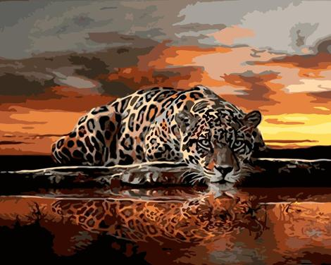 Leopard Diy Paint By Numbers Kits UK AN0162
