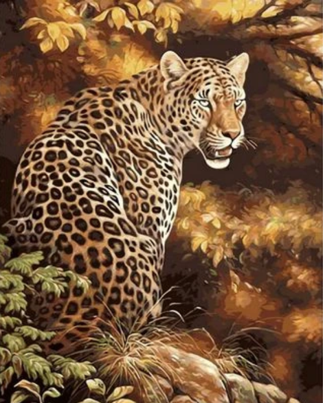 Animal Leopard Diy Paint By Numbers Kits UK AN0166