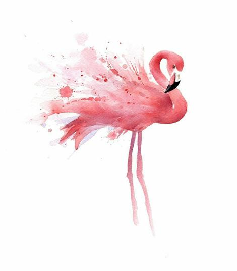 Flamingo Diy Paint By Numbers Kits UK AN0177