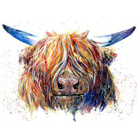 Highland Cow Diy Paint By Numbers Kits UK AN0185