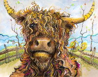 Highland Cow Diy Paint By Numbers Kits UK AN0194