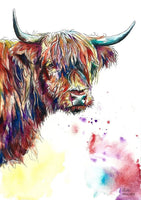 Highland Cow Diy Paint By Numbers Kits UK AN0195