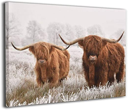 Highland Cow Diy Paint By Numbers Kits UK AN0196