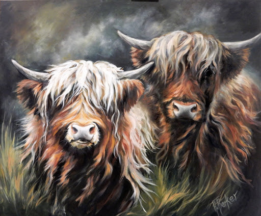 Highland Cow Diy Paint By Numbers Kits UK AN0199