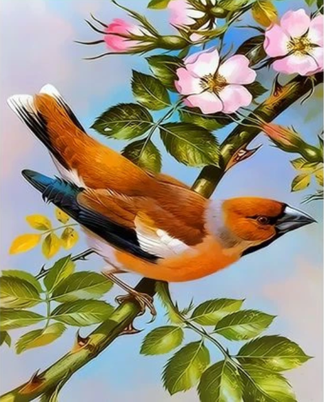 Flying Animal Bird Diy Paint By Numbers Kits UK FA0100