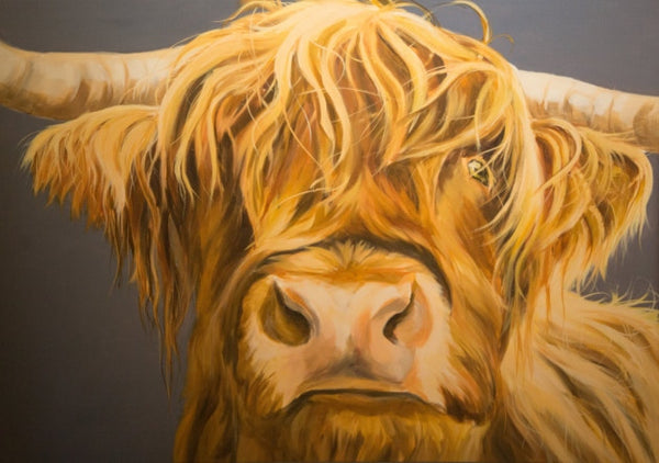 Highland Cow Diy Paint By Numbers Kits UK AN0200