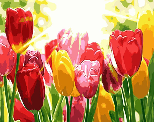 Tulips Diy Paint By Numbers Kits UK PL0234