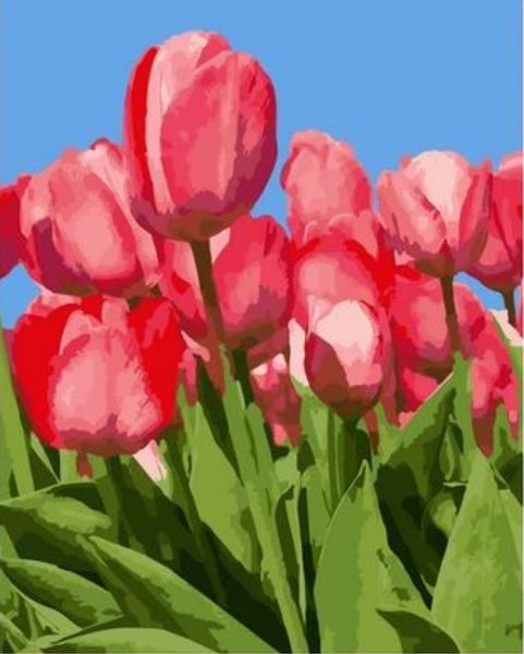 Tulips Diy Paint By Numbers Kits UK PL0236