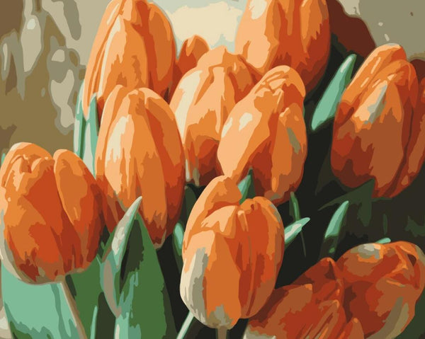 Tulips Diy Paint By Numbers Kits UK PL0241