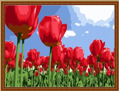 Tulips Diy Paint By Numbers Kits UK PL0249
