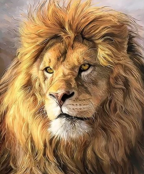 Animal Lion Diy Paint By Numbers Kits UK AN0024
