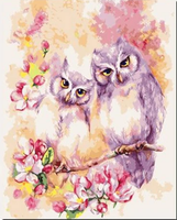 Flying Animal Two Lovely Owl Diy Paint By Numbers Kits UK FA0035