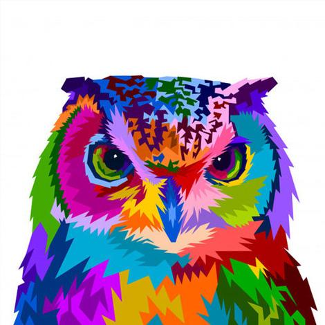 Owl Diy Paint By Numbers Kits Uk VM92156
