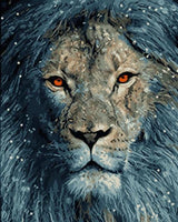 Lion Diy Paint By Numbers Kits UK AN0035