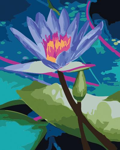 Lotus Diy Paint By Numbers Kits UK,PL0472