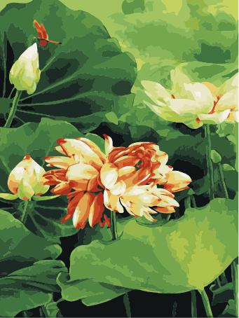 Lotus Diy Paint By Numbers Kits UK,PL0480