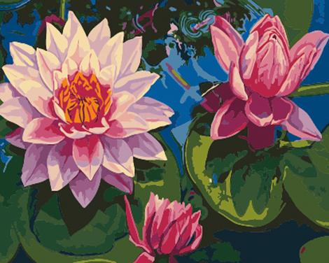 Lotus Diy Paint By Numbers Kits UK PL0490