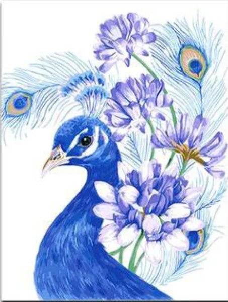 Peacock Diy Paint By Numbers Kits UK AN0673
