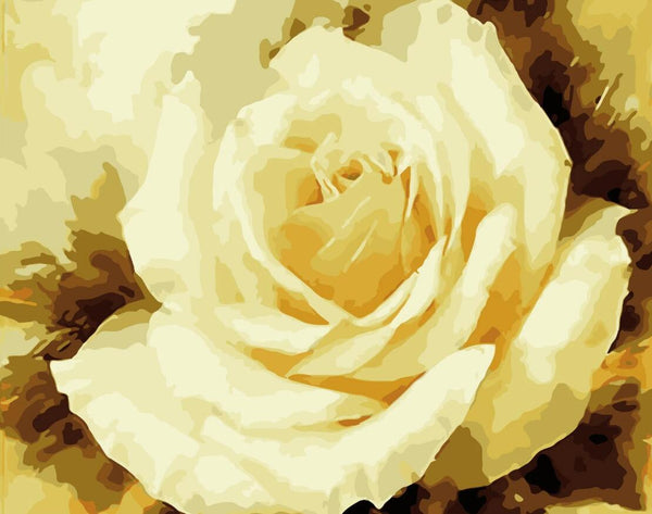 Rose Flowers Diy Paint By Numbers Kits UK PL0520