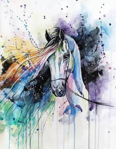 Horse Diy Paint By Numbers Kits UK AN0249