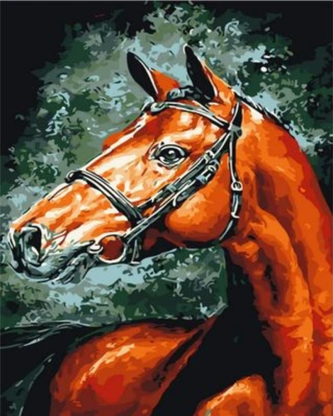 Animal Horse Diy Paint By Numbers Kits UK AN0256
