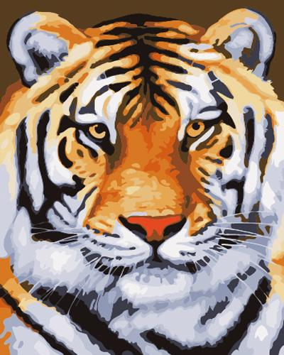 Animal Tiger Diy Paint By Numbers Kits UK AN0360