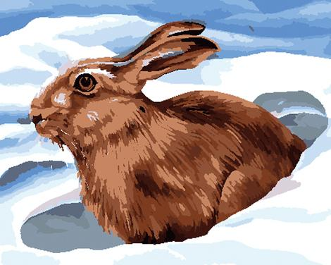 Animal Rabbit Diy Paint By Numbers Kits UK FA0156