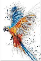 Parrot Diy Paint By Numbers Kits Uk PBN92709