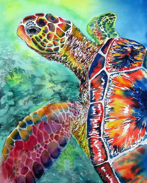 DIY Turtle Paint By Numbers Kits For Adults UK MA094