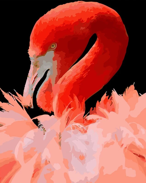 Flamingo Diy Paint By Numbers Kits UK AN0199