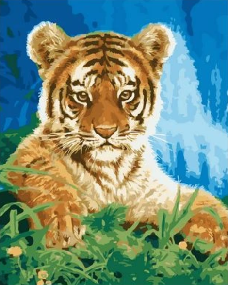 Animal Tiger Diy Paint By Numbers Kits UK AN0353