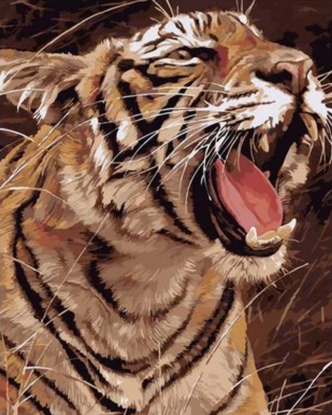 Animal Tiger Diy Paint By Numbers Kits UK AN0351