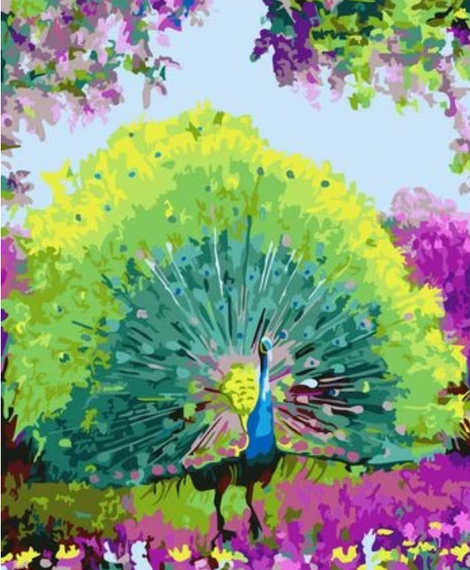 Animal Peacock Diy Paint By Numbers Kits UK AN0686