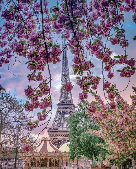 Flower Landscape Eiffel Tower Diy Paint By Numbers Kits LS277