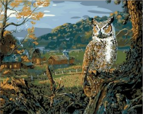 Owl Diy Paint By Numbers Kits UK FA0058