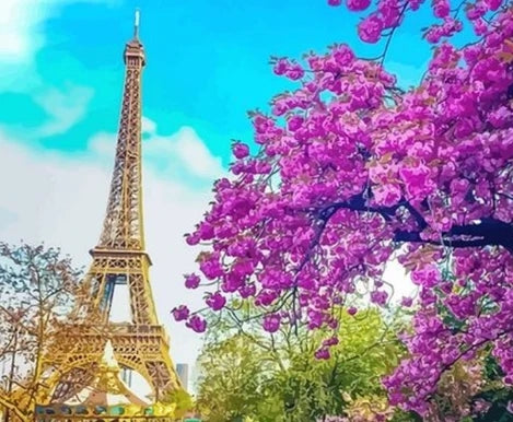 Flower Landscape Eiffel Tower Diy Paint By Numbers Kits LS289