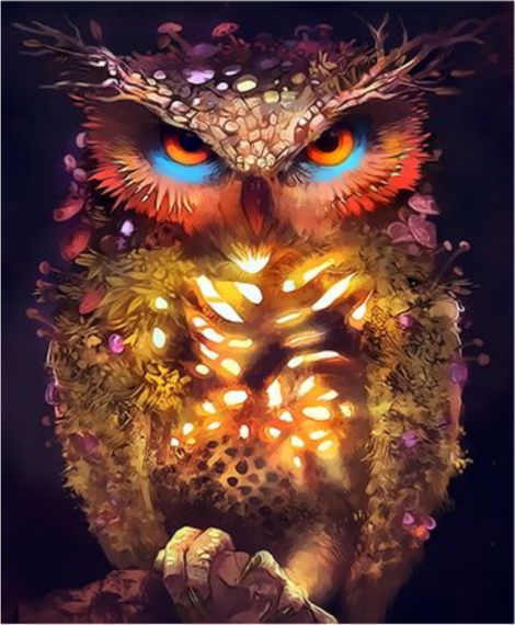 Owl Diy Paint By Numbers Kits UK FA0066