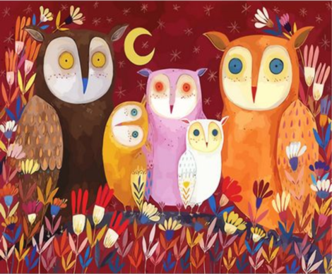 Owl Diy Paint By Numbers Kits UK FA0045