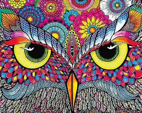 Owl Diy Paint By Numbers Kits UK FA0052