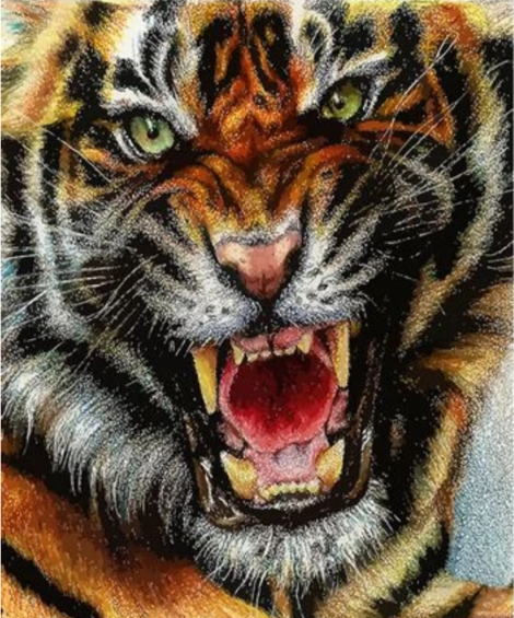 Animal Tiger Diy Paint By Numbers Kits UK AN0357