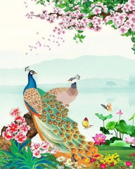 Animal Peacock Diy Paint By Numbers Kits UK AN0677