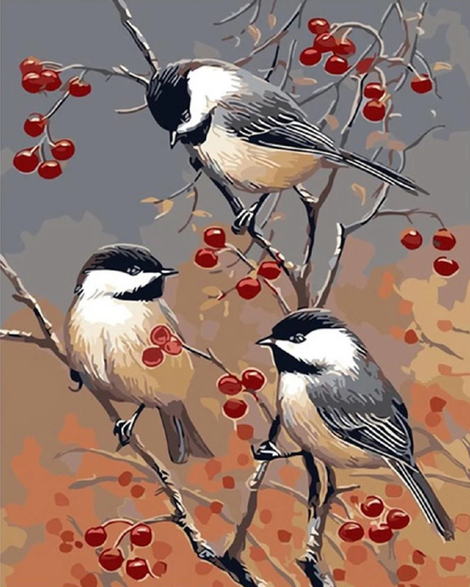 Birds On The Fruit Tree Diy Paint By Numbers Kits UK FA0070