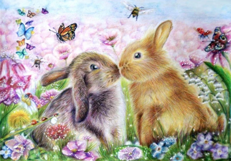 Rabbit Diy Paint By Numbers Kits UK FA0018