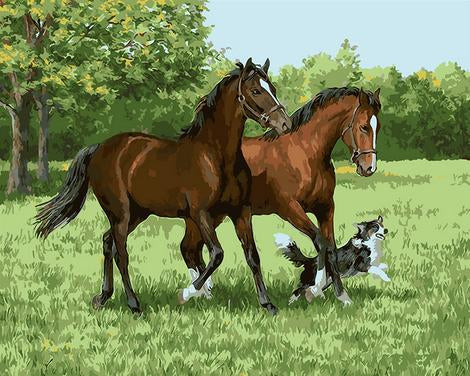 Horse Diy Paint By Numbers Kits UK AN0244