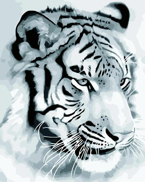 Animal Tiger Diy Paint By Numbers Kits UK AN0346
